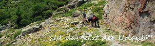 """""""Ist das jetzt der Urlaub?"""" Unsere abenteuerliche Wanderung mit zwei kleinen Kindern und einem Esel auf Korsika"""