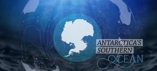 Das Süpolarmeer rund um die Antarktis unter Schutz stellen