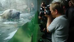 Eröffnung des neuen Eismeers im Hamburger Tierpark Hagenbeck (Photo)