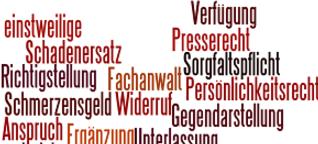 Ansprüche gegen die Presse. Was tun, wenn's knallt? | torial Blog