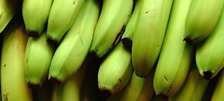Leistungsschutzrecht: Gesetze wie Bananensoftware - sollen bei den Anwendern reifen. Na, Danke!