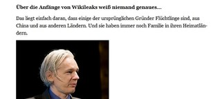 "Julian Assange: ""Wir machen investigativen Journalismus billiger"""