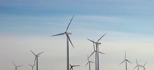 Grüne Investments: Nachhaltige Geldanlagen sind besser als ihr Ruf - WiWo Green