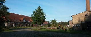 Grundton D 2014 - Schloss Bröllin