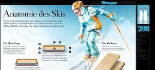 Ski-Anatomie