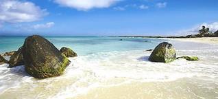 Insel des Glücks: 7 Fakten und Sie lieben Aruba