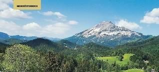 Niederösterreichische Landesausstellung 2015: Die Alpen und wir