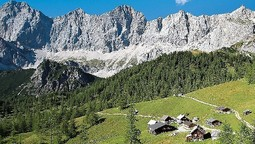 Richtig regional: Hütten in Ramsau am Dachstein