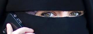 Wirtschaftsministerin Aigner für ein Burka Verbot