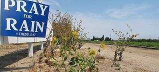 """Dürre in Kalifornien """"Das wahre Gold Kaliforniens ist das Grundwasser"""""""