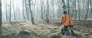 Grenzbock – Eigenartige Rituale