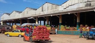 Kuba sagt teuren Lebensmitteln den Kampf an