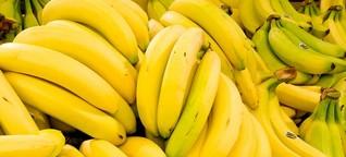 Frutas amargas