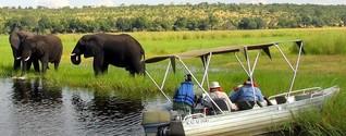 Botswana - Naturparadies und Afrikas Oase der Stabilität