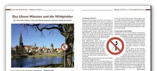 Kommunal Topinform - Ulmer Wildpinkler