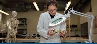 Knochen vom Nil helfen bei Malariaforschung