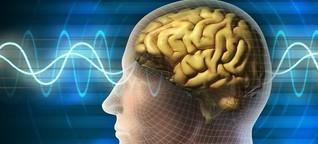 Wirtschaftspsychologie: Grenzen des Neuromarketings