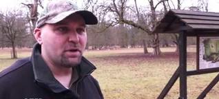 TV-Reportage: Die weißen Dammhirsche im Tiergarten Hannover