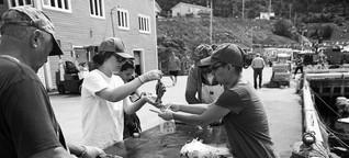 Bürgerwissenschaft mit Kabeljau - wie man die Plastikflut im Meer an die Öffentlichkeit bringt | Greenpeace Magazin