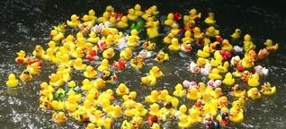Chemikalien in Spielzeug: Das giftige Quietscheentchen