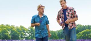 Lavendel-Anbau: Ein Traum wird wahr