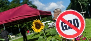 G20-Gipfel: Gegner gehören dazu
