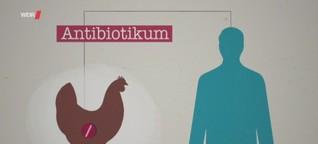 Planet Wissen: Reserveantibiotika in der Tierhaltung