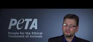 Die h1-Reportage: Exotische Tiere im Wohnzimmer - Hobby oder Tierquälerei?