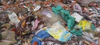 """""""Wir müssen deutlich weniger Abfall produzieren"""""""