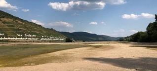 Der Rhein - immer weniger, immer wärmer