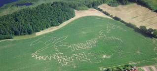 Der Nautiker, sein GPS und sein Traktor - so entsteht ein Maislabyrinth