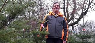 Der Weihnachtsbaum - aus Ägypten nach Rom