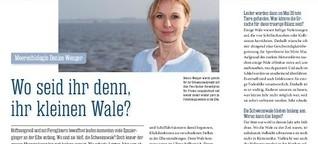 PINNWAND / Hamburger Abendblatt: Wo seid ihr denn, ihr kleinen Wale?
