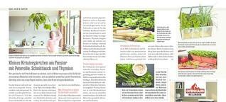 PINNWAND / Hamburger Abendblatt: Kleiner Kräutergarten am Fenster