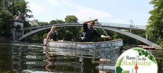 So entdecken Sie mit dem Kanu die Berliner Spree