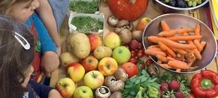 Bildungsworkshop: Wie werde ich Lebensmittelretter?