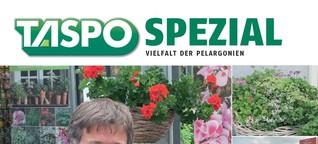 TASPO Spezial: Vielfalt der Pelargonien