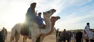 Sahara Festival in Douz. Wettkampf in der Wüste von Tunesien