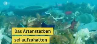 UN-Bericht zum Artensterben