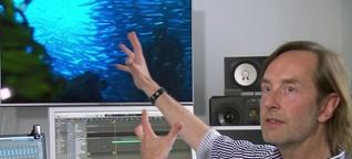 """Live-Filmmusik für den Naturfilm """"Magie der Fjorde"""""""