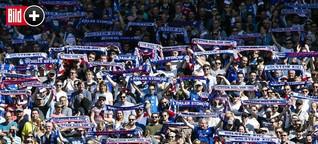 Holstein Kiel: Fan-Kosmos - Die Wahrheit über die Kiel-Fans