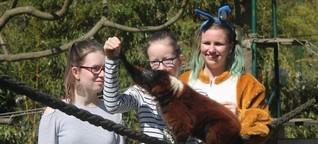 Osterausflug im Tierpark Gettorf: Eiersuche und Rallye quer durch den Park