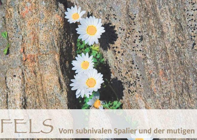 Über die fünf alpinen Lebensräume