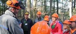 Wie nachhaltiger Waldschutz aussehen muss