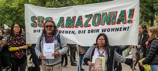 """""""Die Länder des Nordens sehen Amazonien als ihr Reservoir"""""""
