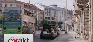 Wie zerrissen ist Sachsen? | Wahl 2019 | MDR