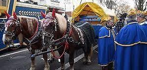 Pferde im Karneval: Zwischen Tradition und Tierquälerei