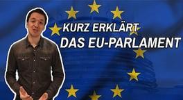 Europawahl kurz erklärt | Hallo Neuland Unterwegs
