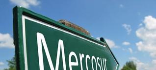Steht die Kritik dem Mercosur-Abkommen im Weg?