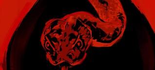 Der Biss der Klapperschlange | Netflix: Die Erklärung des Endes | QUADRATAUGE